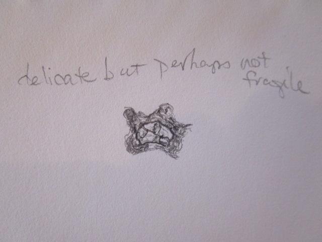 detritusSketch